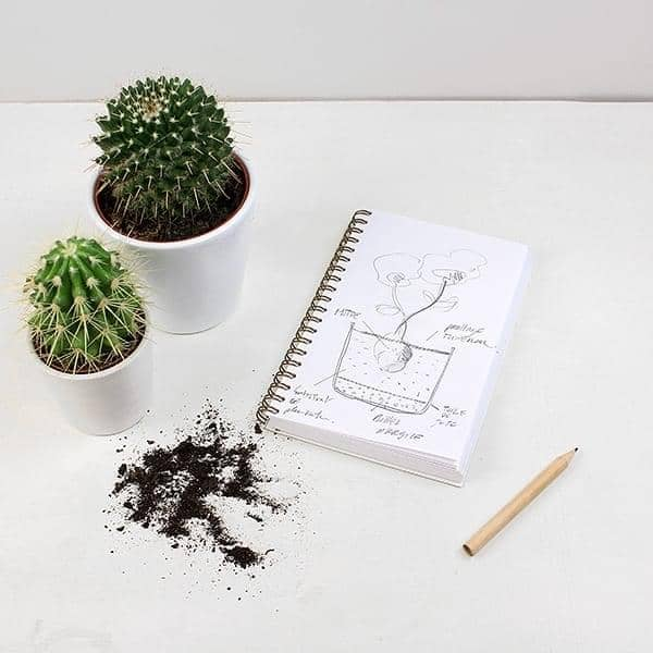 Libro de cocina cuaderno de jardiner a y cuaderno de diy for Libros de jardineria